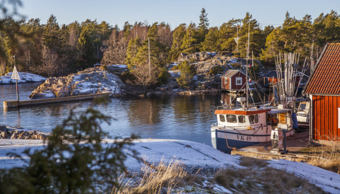 Hasselö familjedagar   Hasselö i Tjust skärgård Västervik